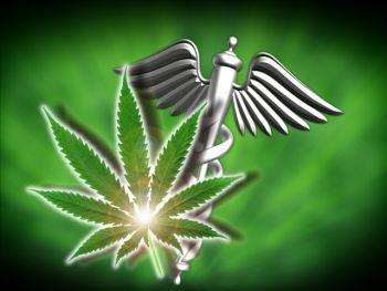 Torino alleggerisce le droghe. Cannabis tra terapia e ricreazione