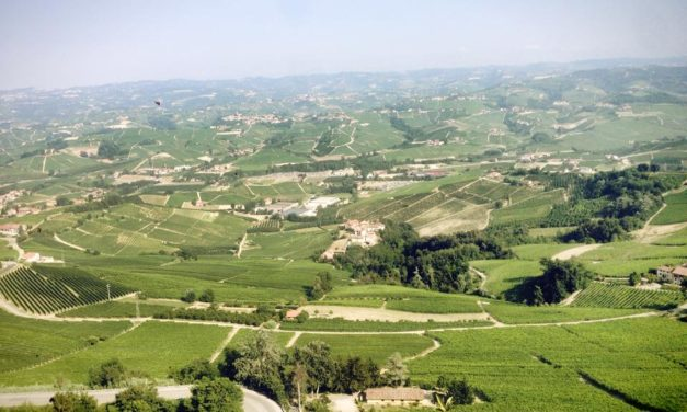 """In Langhe Roero Monferrato il """"Camouflage"""" è il prossimo attesissimo ospite."""