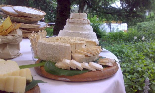 Pizza e birra, formaggi e buon vino: è questa la giornata perfetta di Cheese