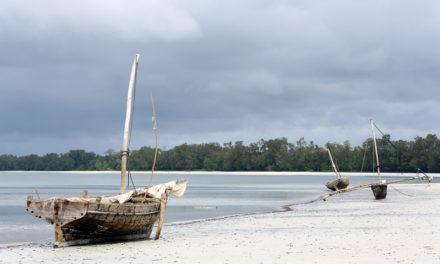 Sotto il segno della magia. A casa di una strega a Pemba, isola semi sconosciuta della Tanzania.