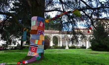 Follia in Fiore a Collegno. Ospita una delle ex strutture psichiatriche più grandi d'Italia.
