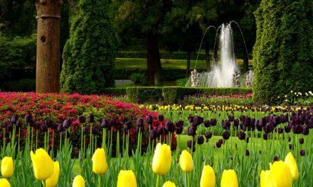 Classifica giardini, il Piemonte batte Versailles