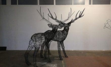 Arte Lungo Dora. Tre nuove installazioni d'arte contemporanea in occasione della Giornata Mondiale dell'Acqua.