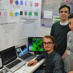 """Gli studenti del Galfer sono i migliori nel concorso europeo """"I giovani e le scienze"""""""