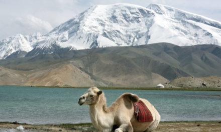 Ritorno sulla Karakorum Highway. Al MAO si racconta della via asfaltata più alta del mondo.