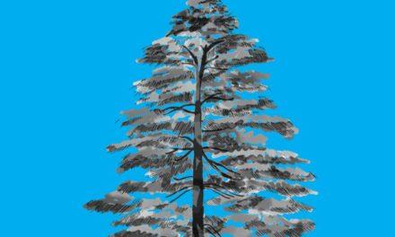 L'ultimo albero, il libro di Claudio Gallo trascende la storia per ricamare una verità.