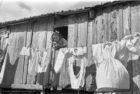 Una Wunderkammer per Ando Gilardi. Le foto dal '50 al '62 alla Galleria d'Arte Moderna.