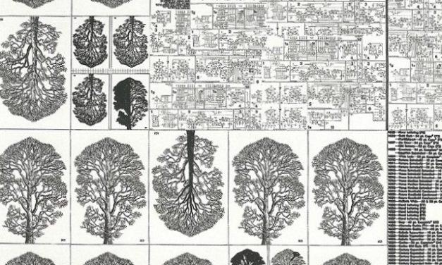"""Le artistiche """"Connessioni"""" di Franco Valsecchi alla Biblioteca Nazionale Universitaria"""