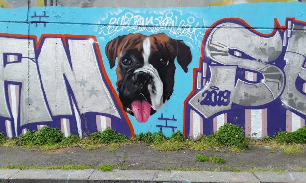 Creatività a cielo aperto. La street Art per gli spazi urbani.